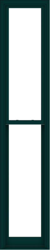 WDMA 24x120 (23.5 x 119.5 inch)  Aluminum Single Hung Double Hung Window without Grids-5